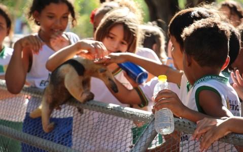 Crianças no zoologico do 72 bi