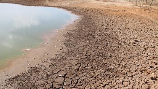 As perspectivas para o futuro são de quadras mais secas./ Foto: arquivo