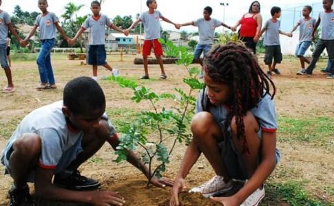 educação ambiental meio ambiente