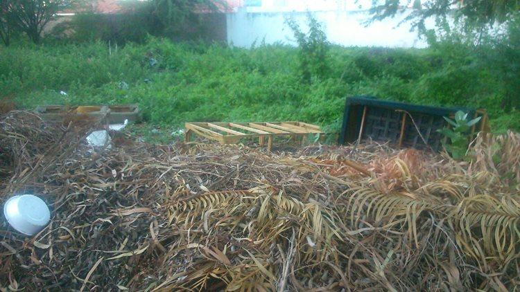 Maria Auxiliadora Lixo 02