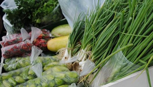 Frutas também são destaque nos produtos orgânicos plantados na região./ Foto: arquivo