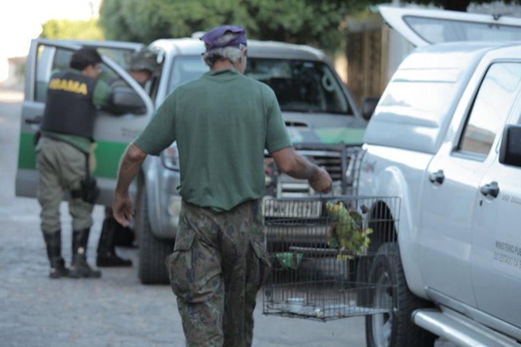primeiro dia da operação teve como resultado a prisão de uma pessoa suspeita de cometer tráfico de animais silvestres em Juazeiro, além de 123 animais em cativeiro, 60 litros e 46,98 kg de agrotóxicos vencidos em uma propriedade/ Foto: Assessoria