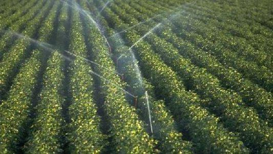 Irrigação-divulgação