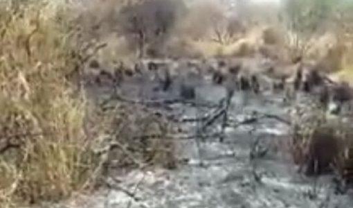 Local foi incendiado nesta terça-feira. / Foto: reprodução Whats