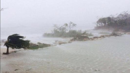 Moradores da Flórida foram (Foto: Internet)