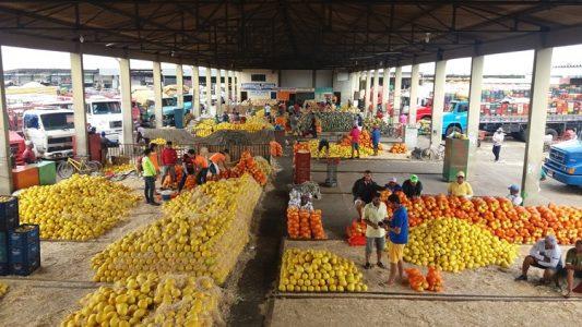 mercado do produtor de juazeiro – Blog do Waldiney Passos